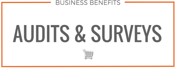 Business Benefits Audits Surveys