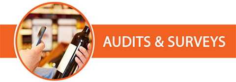 Audits Surveys Free Custom Survey Template